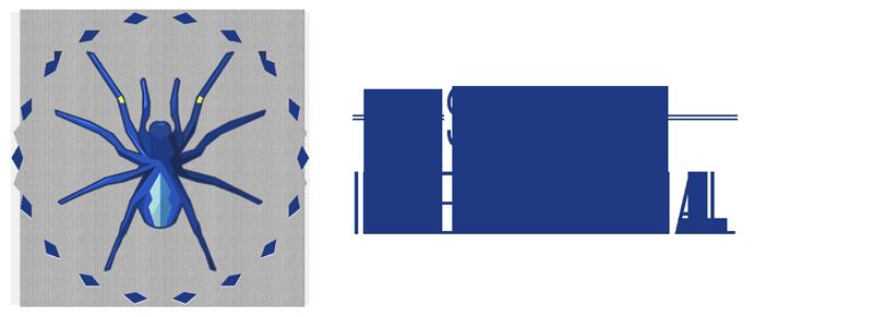 Spiders International Logo